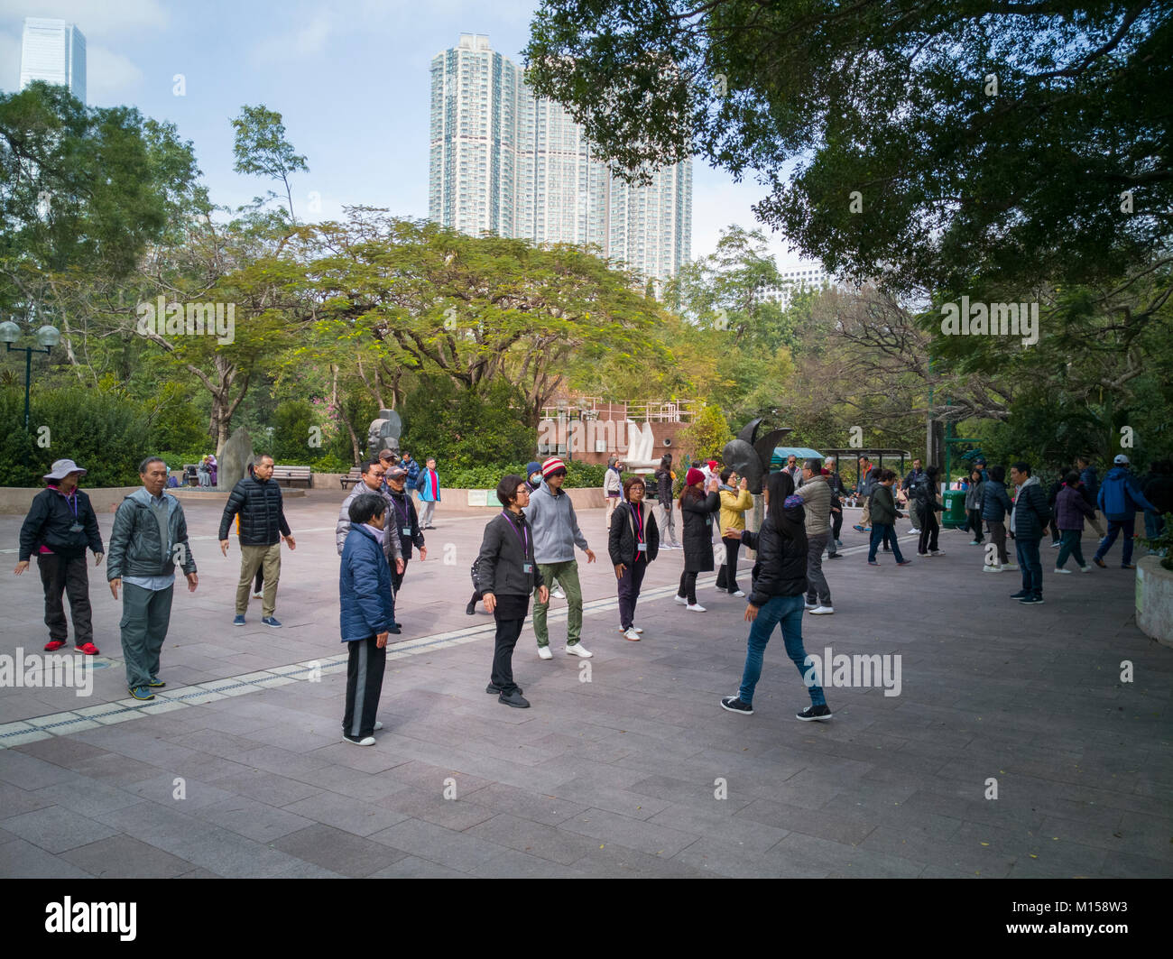 People practicing tai chi in Kowloon Park, Hong Kong - Stock Image