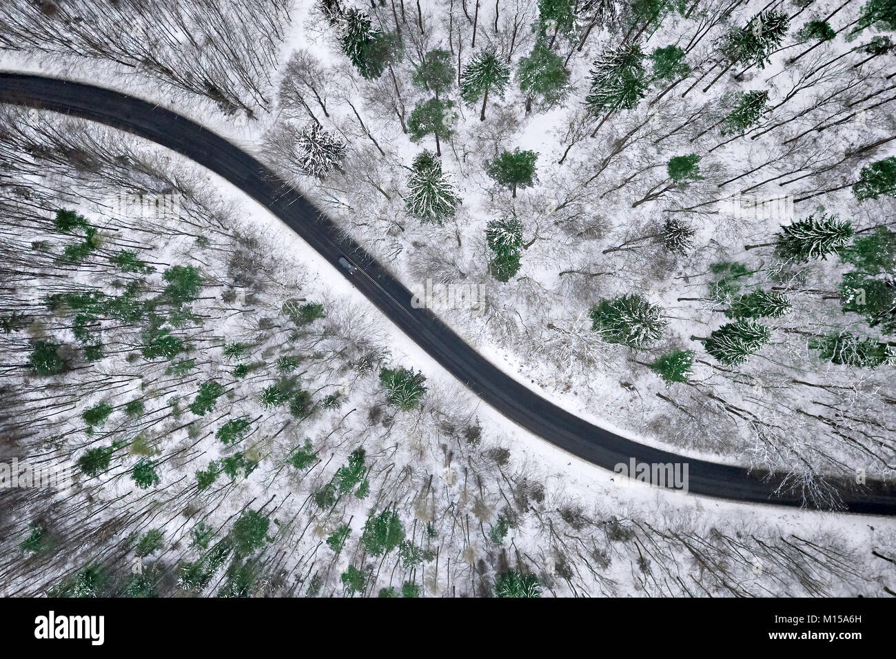 Aerial view of winter road in snowy forest. Drone captured shot from above. - Stock Image