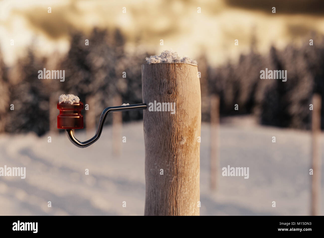 3d rendering of wooden post with red isolator in thw winter season in evening sunshine - Stock Image