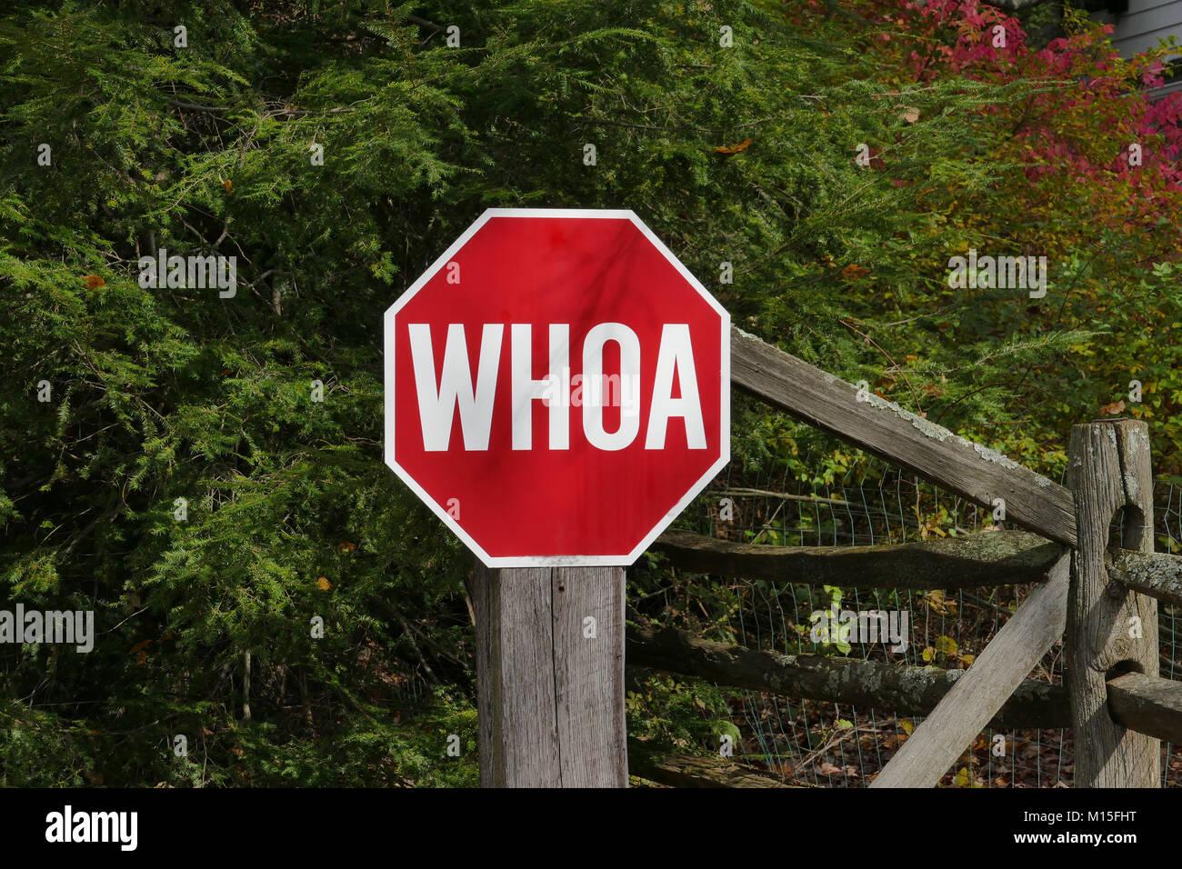 Whoa Stock Photo