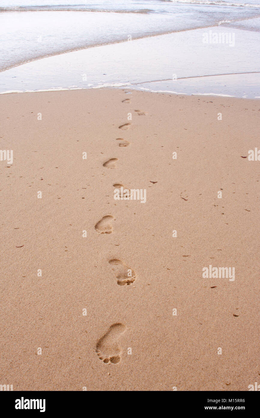 Footprints in the sand coming out of the Atlantic Ocean at Head of the Meadow Beach, Cape Cod Stock Photo