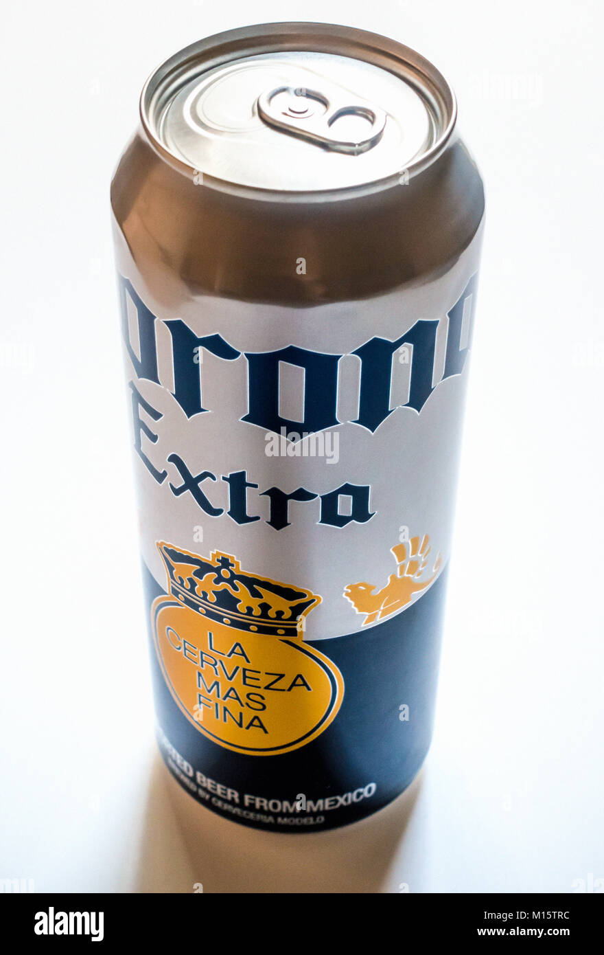 An extra large can of Corona Extra Mexican pale larger beer - Stock Image