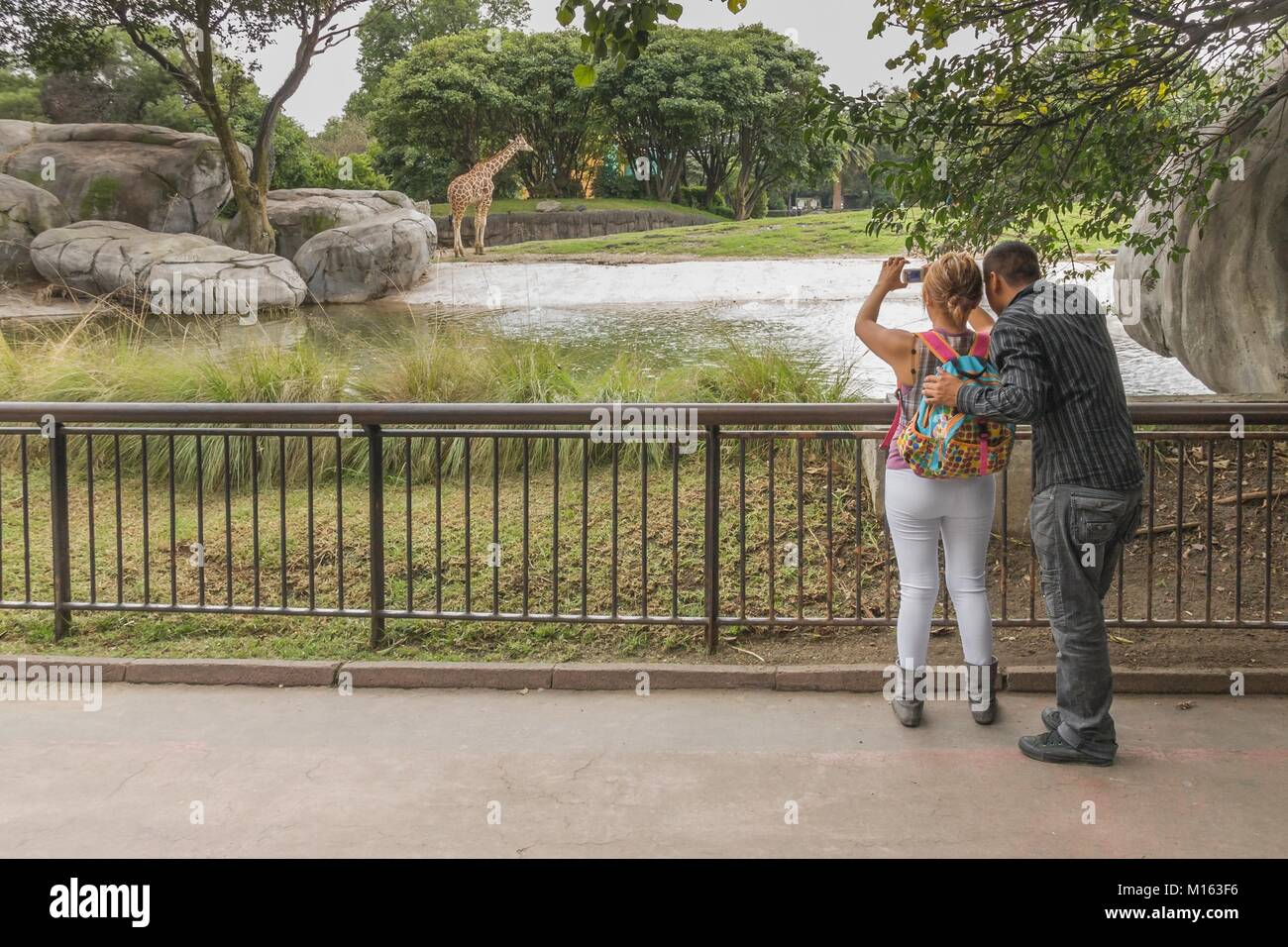 Young couple taking pictures in a zoo of Mexico City. - Stock Image