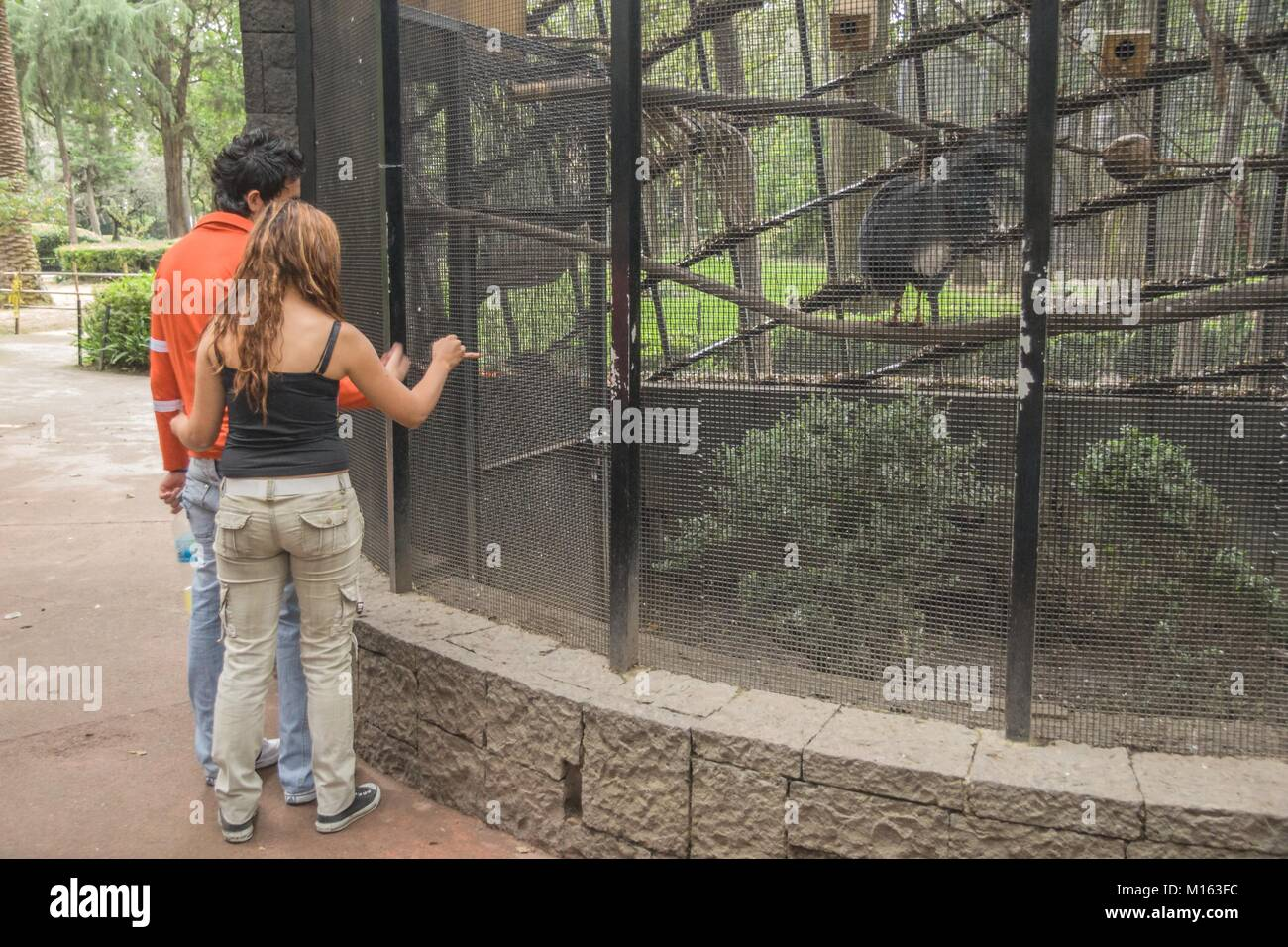 An couple of young lovers enjoying a trip to a zoo in Mexico City. - Stock Image
