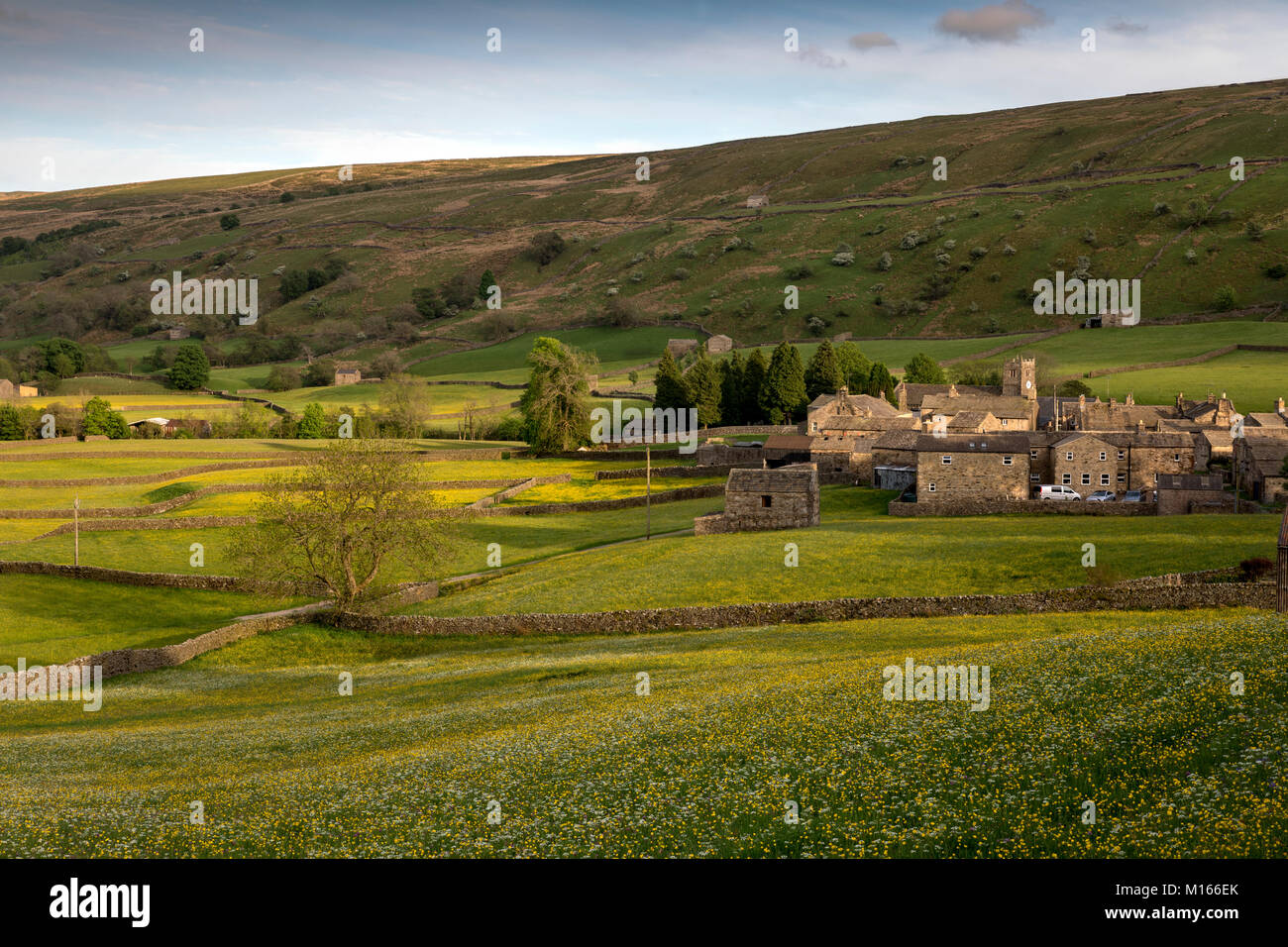 Meadows; Muker; Yorkshire; UK - Stock Image