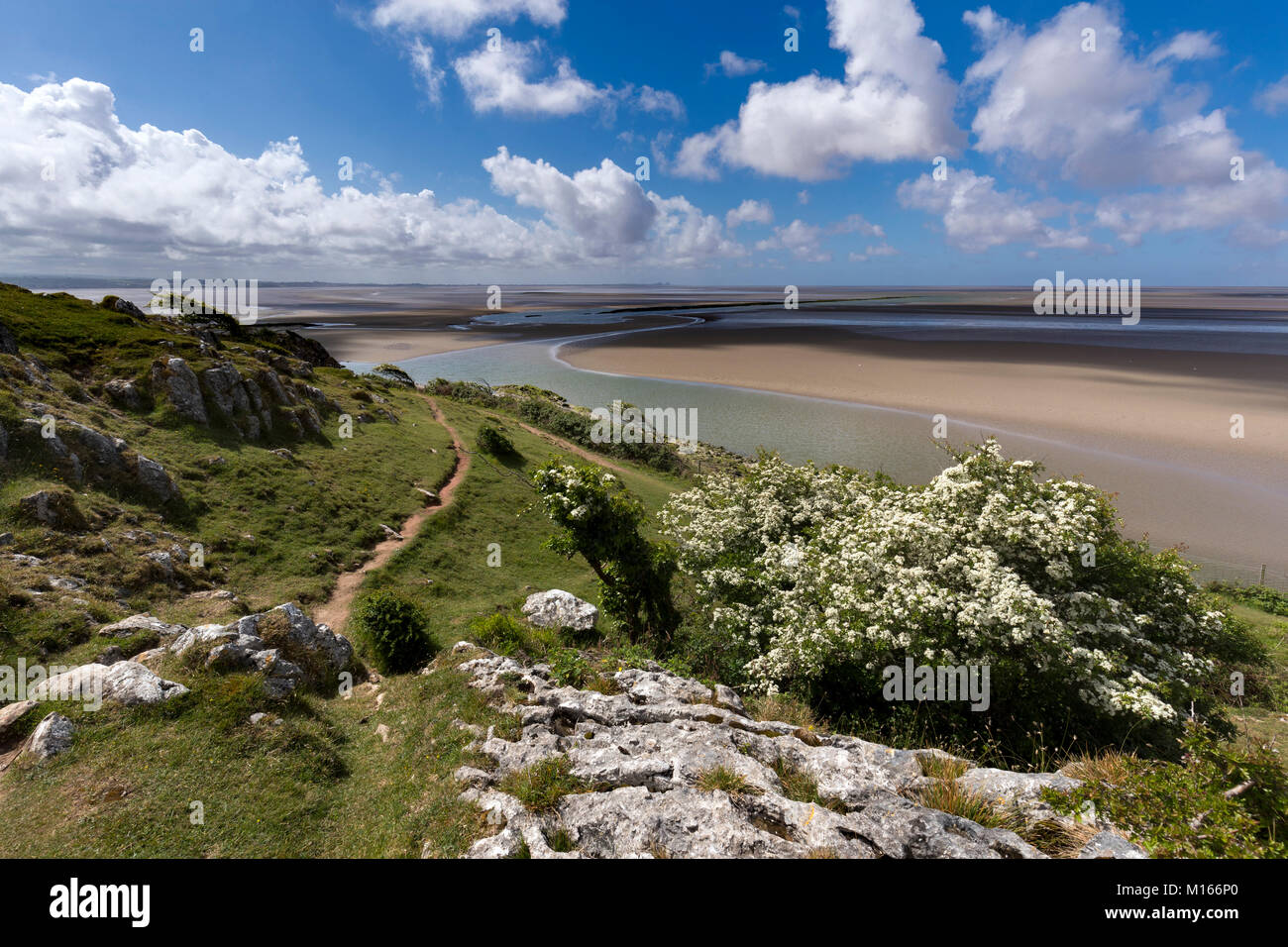 Silverdale; Jack Scout; Looking out to Morcambe Bay; Lancashire; UK - Stock Image