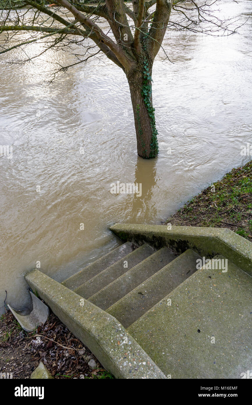 The stairs descending to the banks of the river Marne are flooded halfway up by the important rise in the water - Stock Image