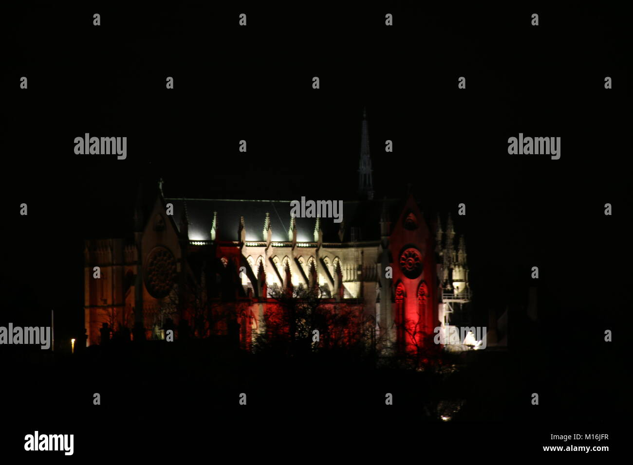 Arundel Cathedral illuminated for rememberance day Stock Photo