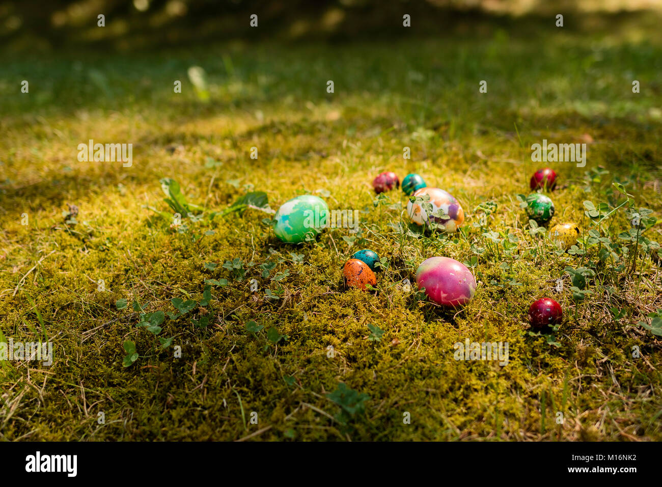 Easter background on the grass Stock Photo