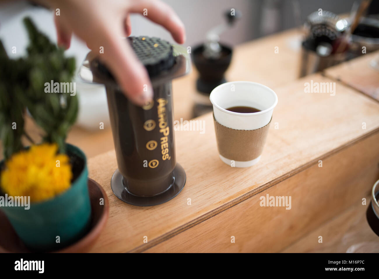 Preparing fresh organic Coffee in Cali, Colombia - Stock Image