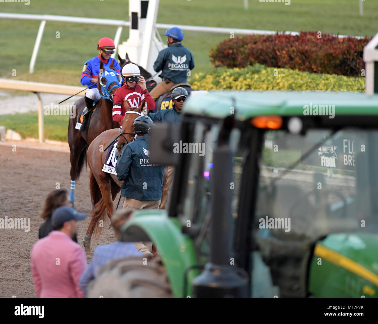 HALLANDALE, FL - JANUARY 27: Betting Favorite Gun Runner #10, ridden by Florent Geroux,and owned by Winchell Thoroughbreds - Stock Image