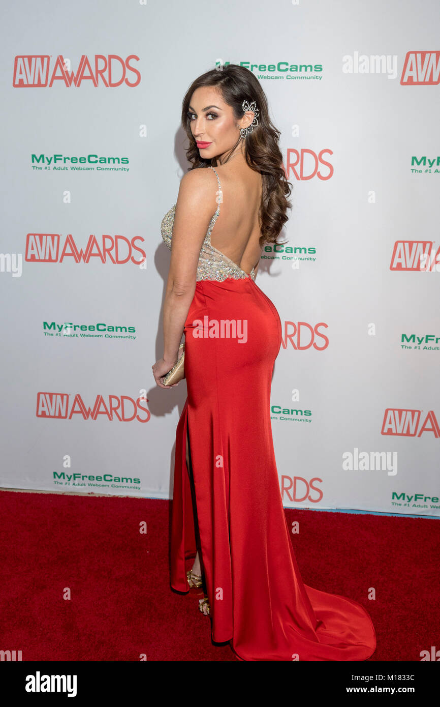 download avn awards