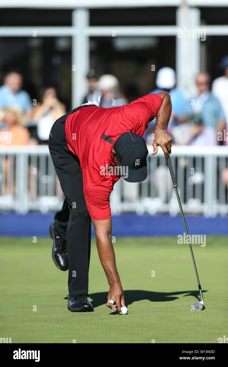 San Diego, USA. 28th Jan, 2018. Tiger Woods placing his ball marker on the 17th green during final round of the - Stock Image