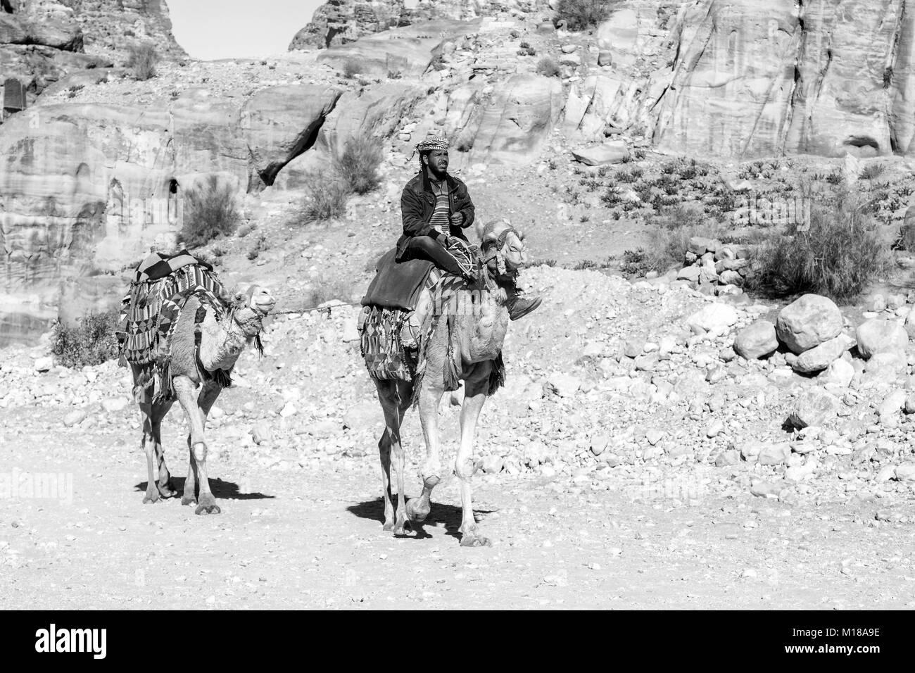 Petra, Jordan – December 25th, 2015: Bedouin man riding a camel in the ancient Nabatean city of Petra, Jordan Stock Photo