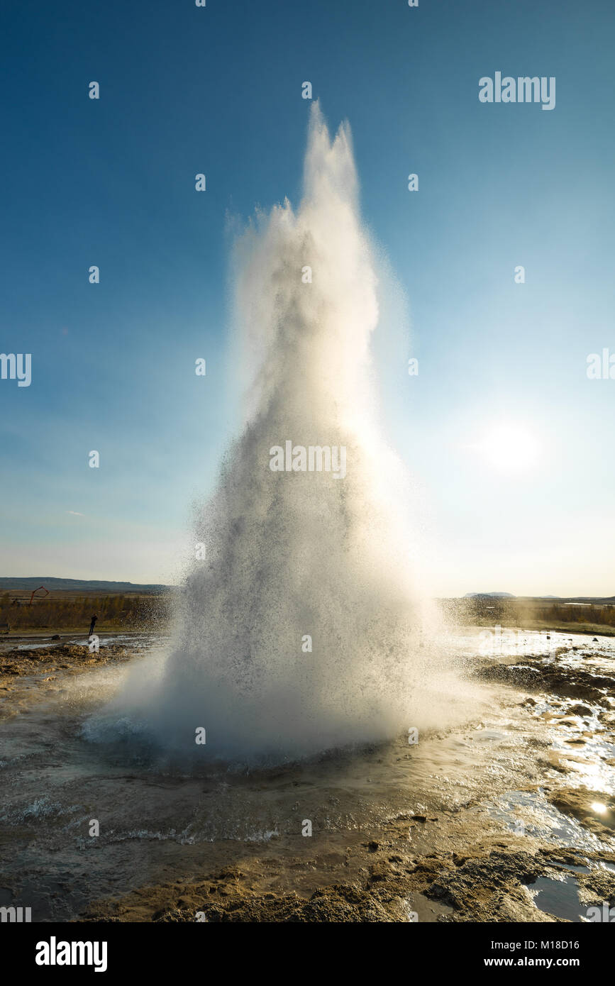 Strokkur geyser erupting water due to geothermal activity backlit on a sunny Autumn day, southwestern Iceland - Stock Image
