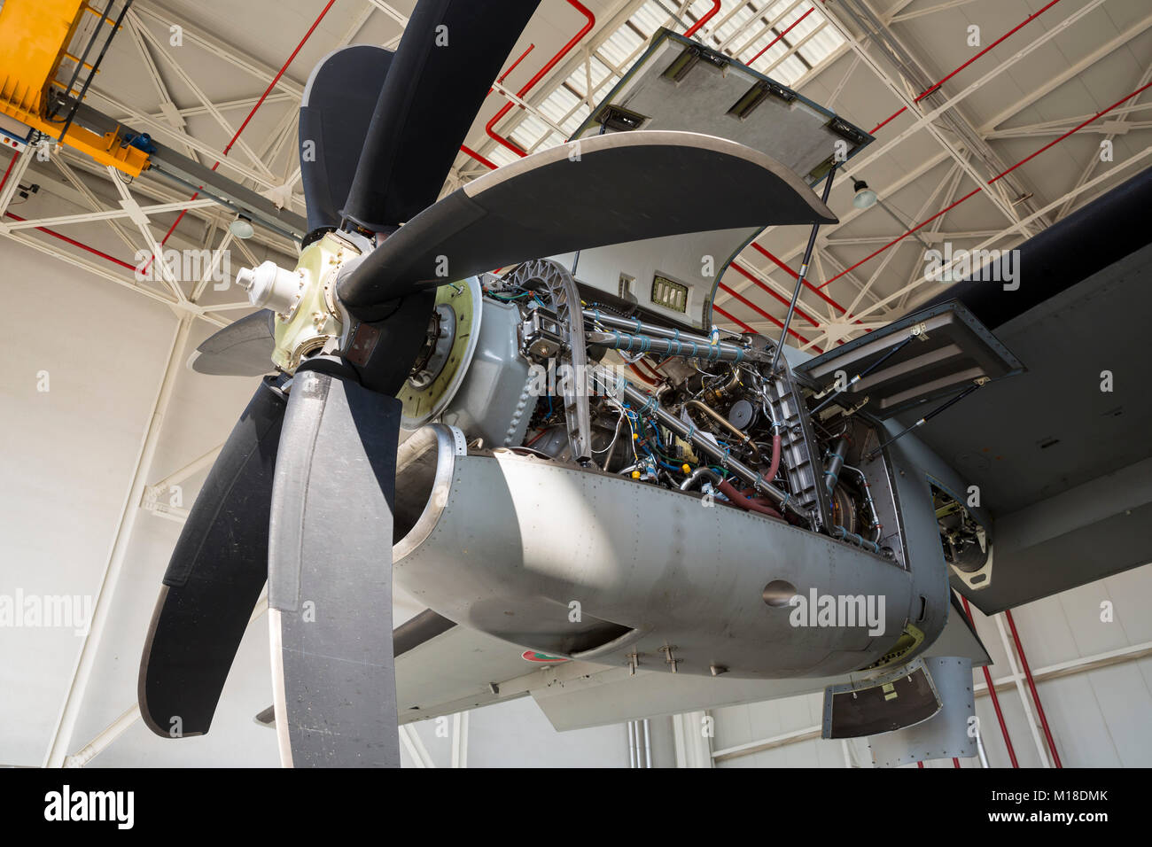 Aircraft engine maintenance  Airplane engine with propeller gets a