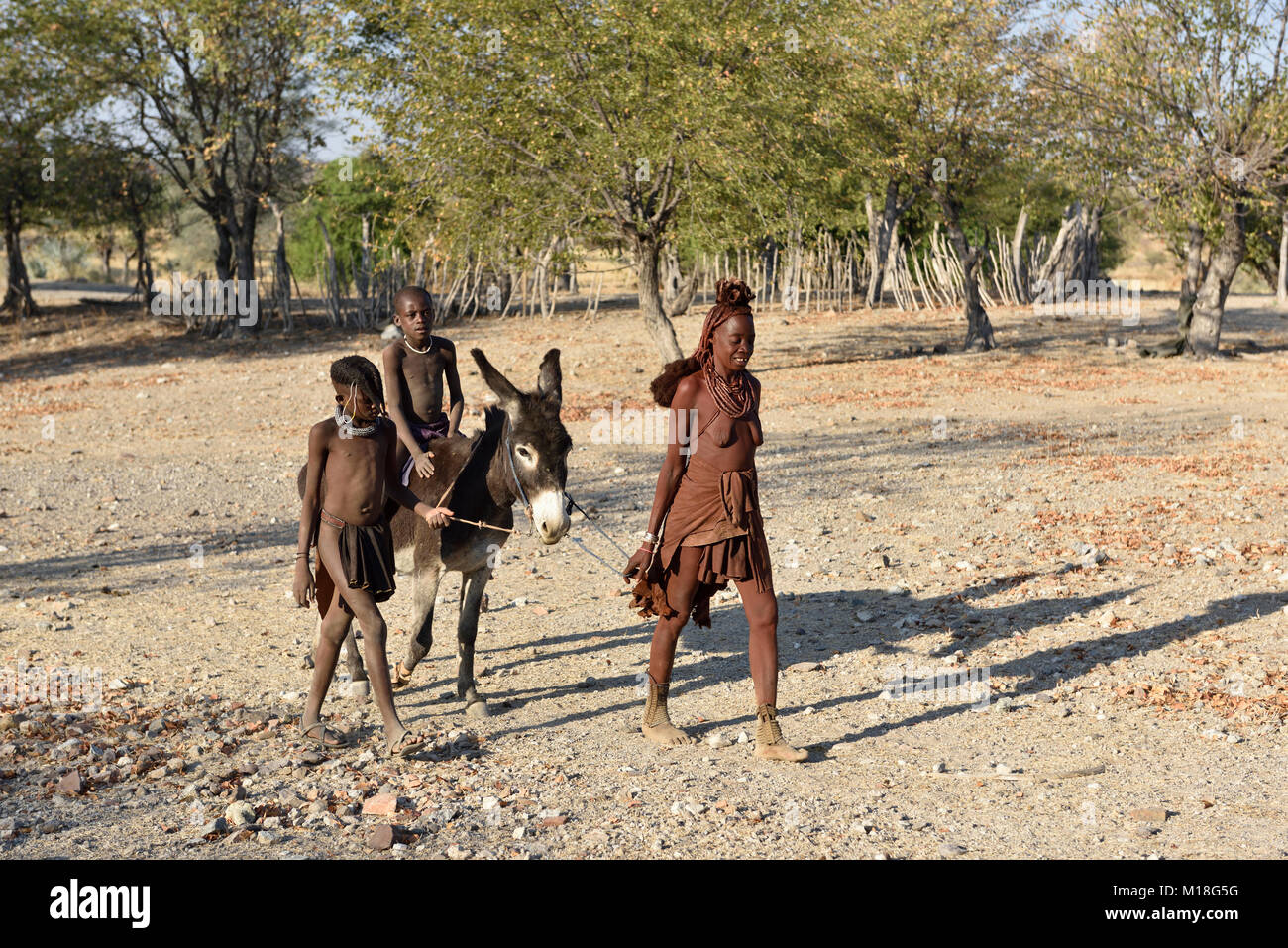 Married Himbafrau,children ride on donkey,Kaokoveld,Namibia Stock Photo