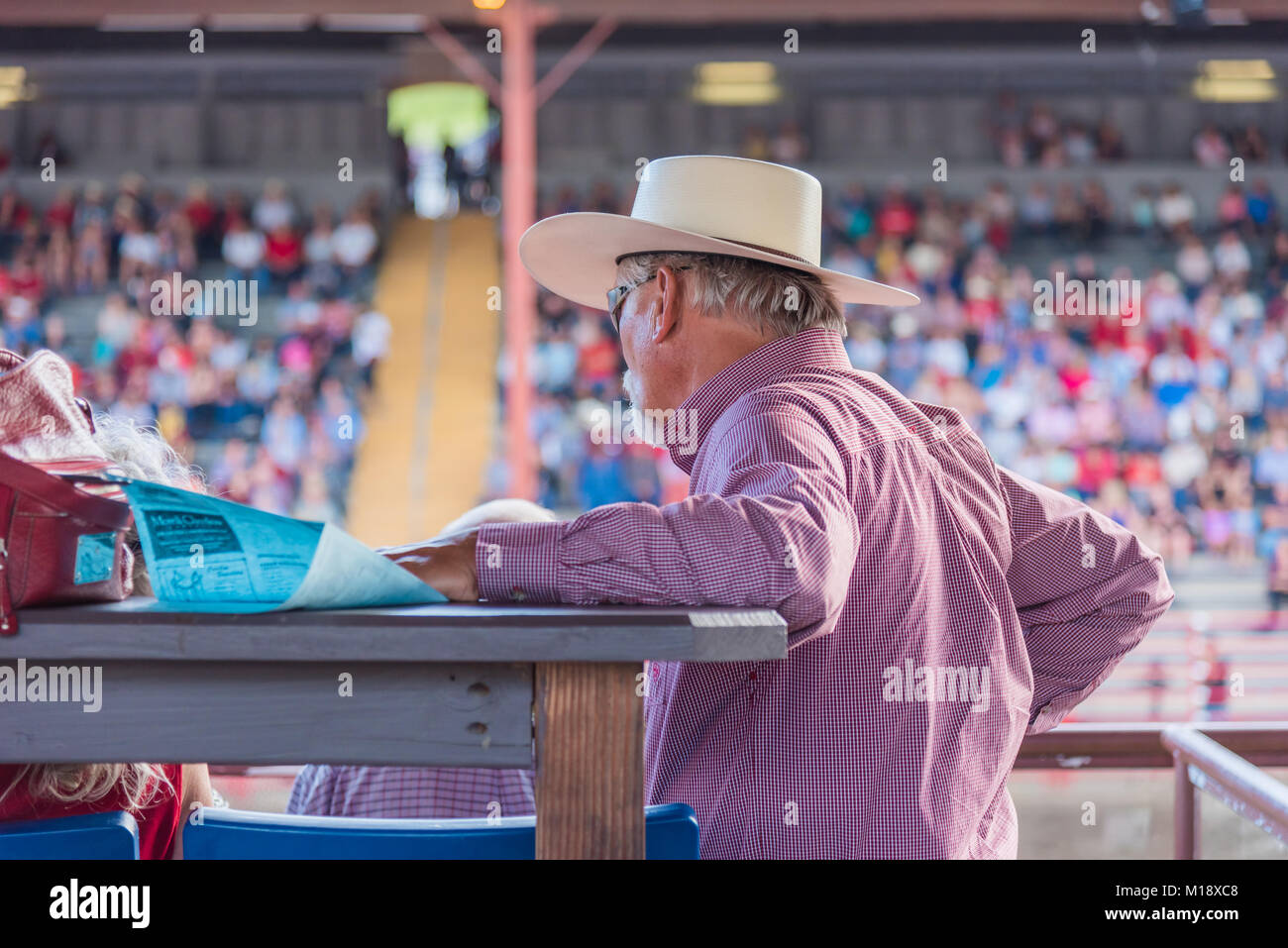 Man in VIP stands watches the action in the arena below during the 90th Williams Lake Stampede, on of the largest - Stock Image
