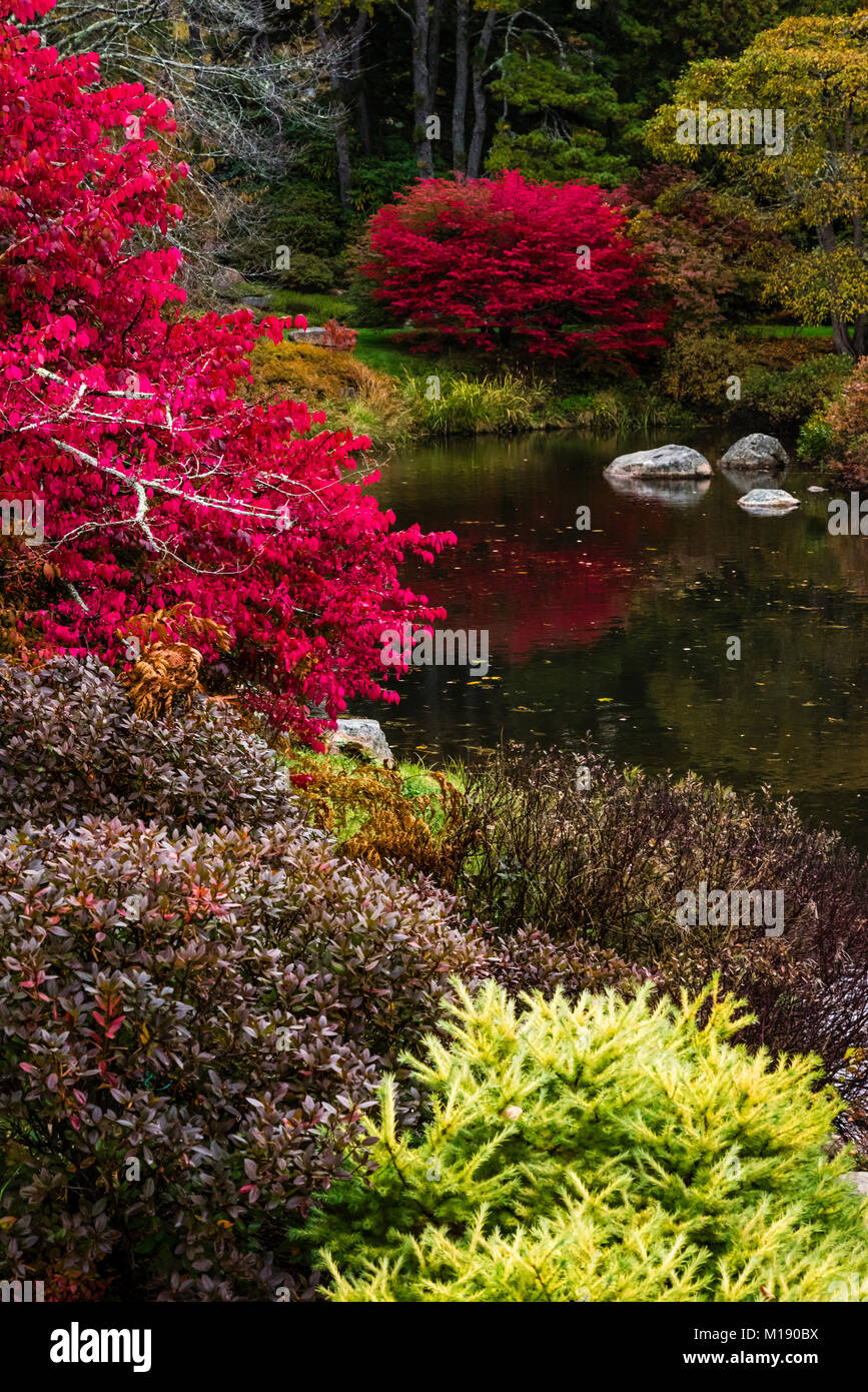 Asticou Azalea Garden Stock Photos & Asticou Azalea Garden Stock ...