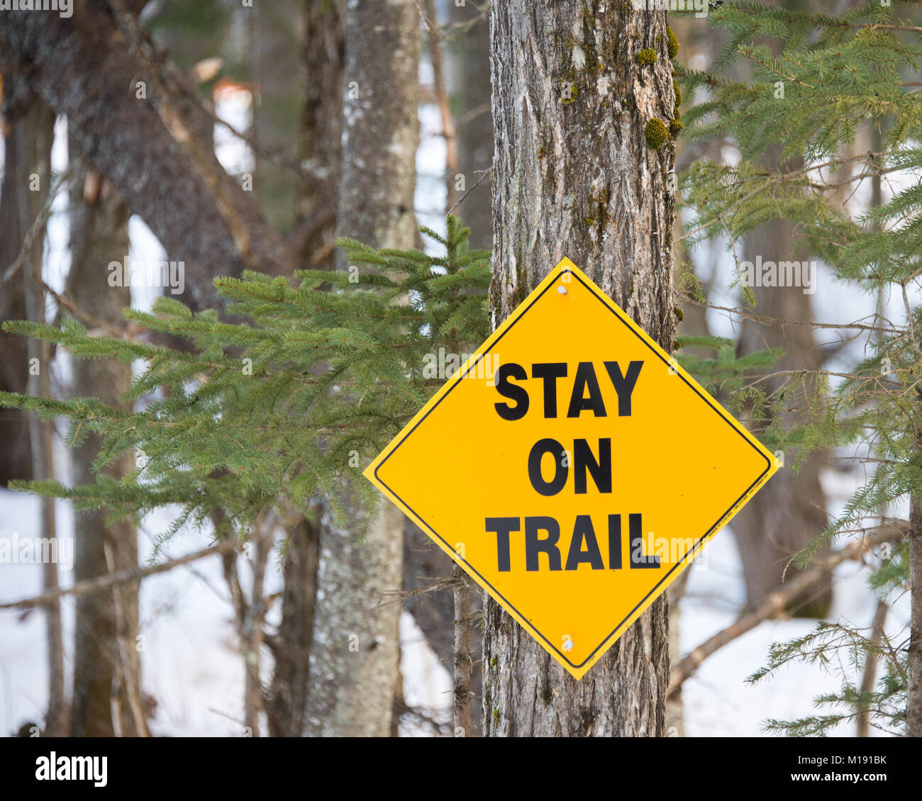 Yellow sign on a snowmobile trail warning to stay on trail going through a business area in Speculator, NY USA - Stock Image