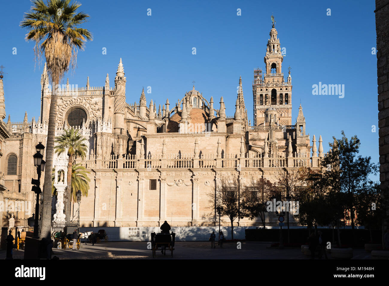 Cathedral and La Giralda bell tower, Seville, Andalusia, Spain. - Stock Image