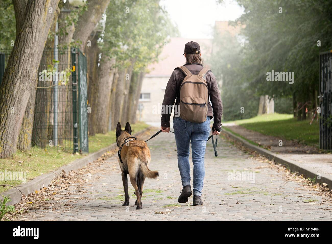 woman and her dog looking for houses. the discovery of abandoned buildings. post apocalypse. - Stock Image
