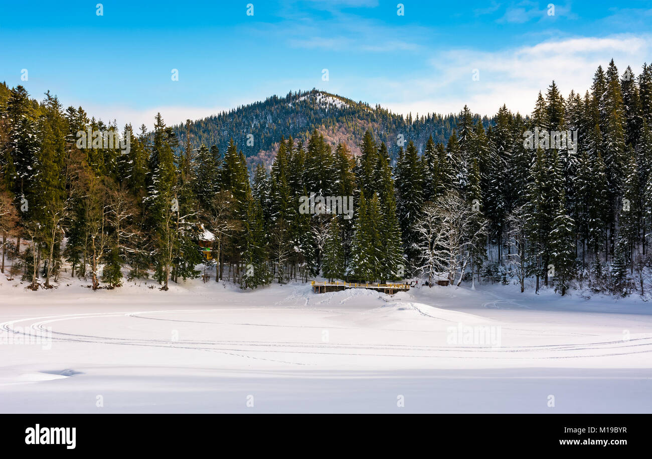Snow Covered Frozen Synevyr Lake In Winter Beautiful Nature Scenery Of Most Visited Locations Carpathian Mountains
