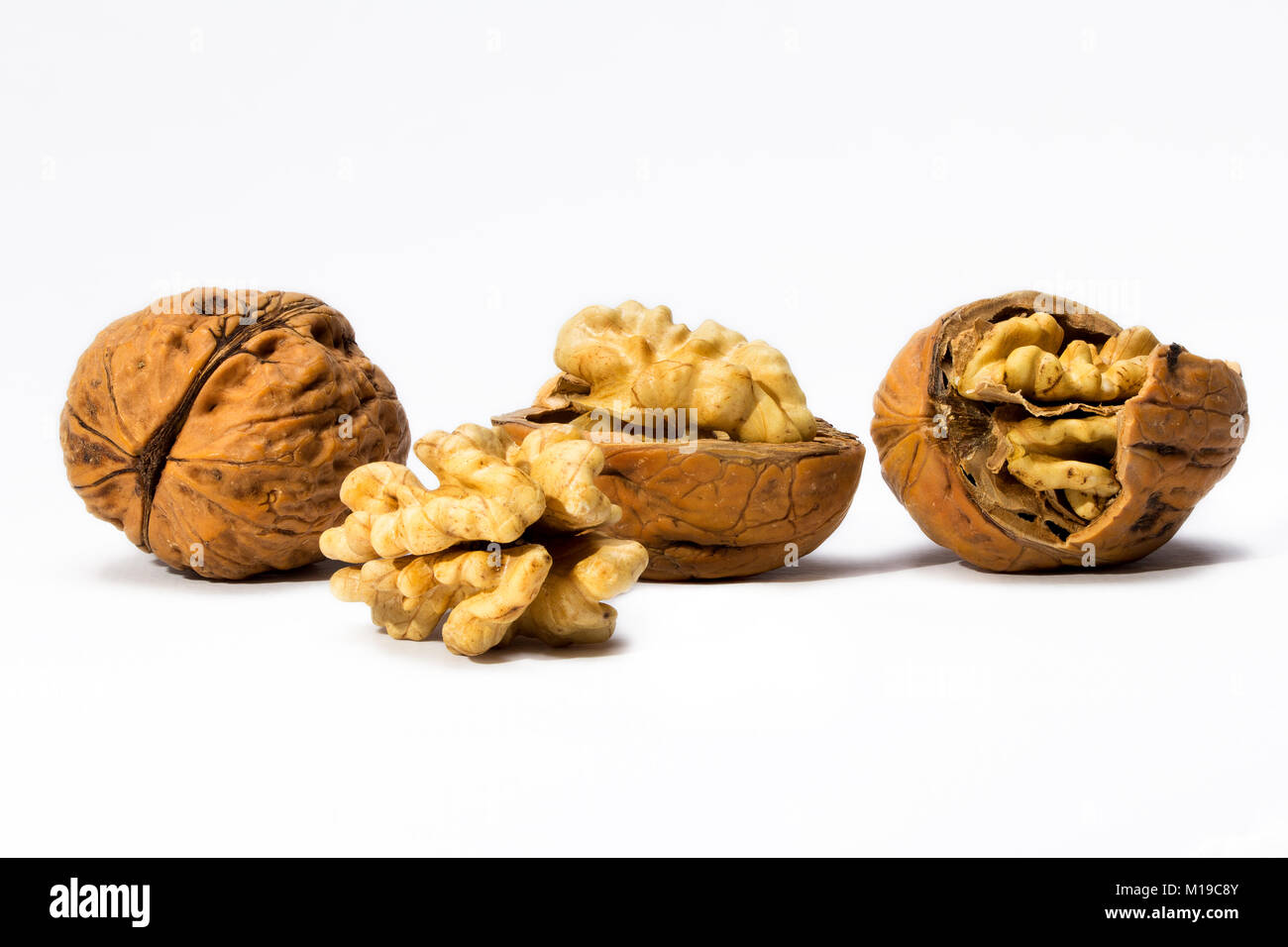 walnuts on white background macro, four objects, isolated - Stock Image