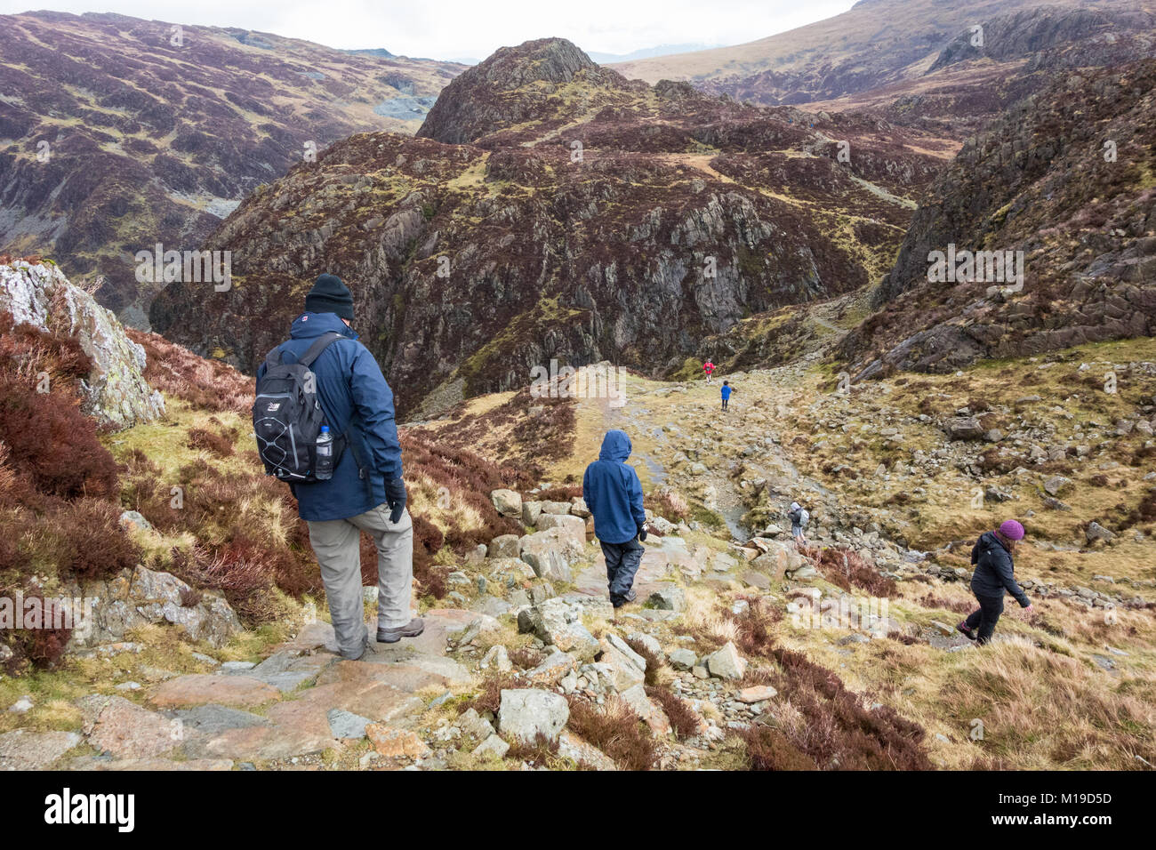 walkers descending from Haystacks on the path between Green Crag and Great Round How towards Honister, Lake District, - Stock Image
