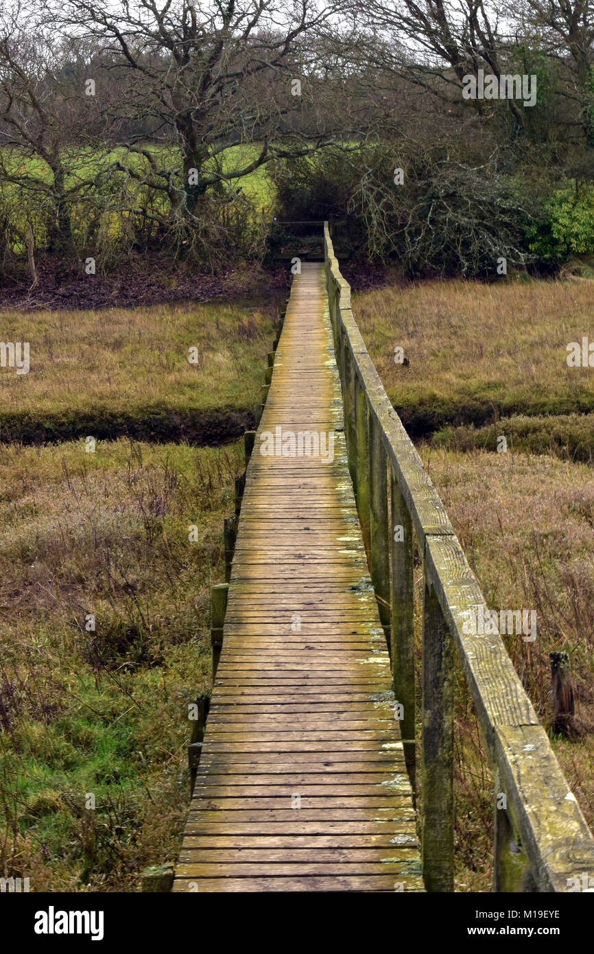A boardwalk or wooden bridge across marshes on a public footpath in the countryside. Wooden walkway with handrail - Stock Image