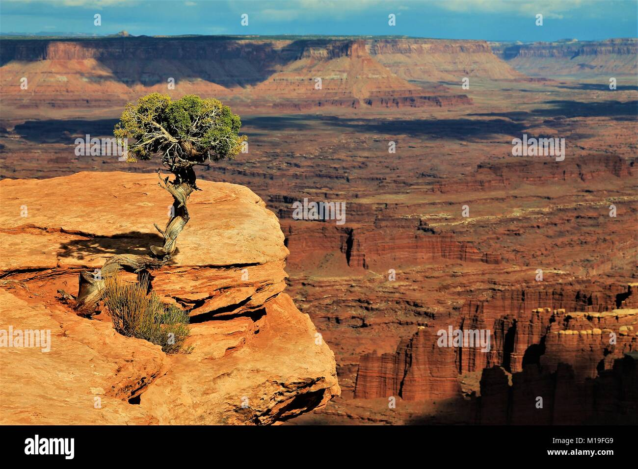 Exploration of as many  US National Parks as possible has been a goal we are successfully and happily in the process - Stock Image