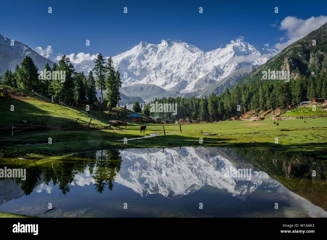 View of mighty Nanga Parbat Mountain (8,126 meters), also known as the Killer Mountain is one among the 14 eight - Stock Image