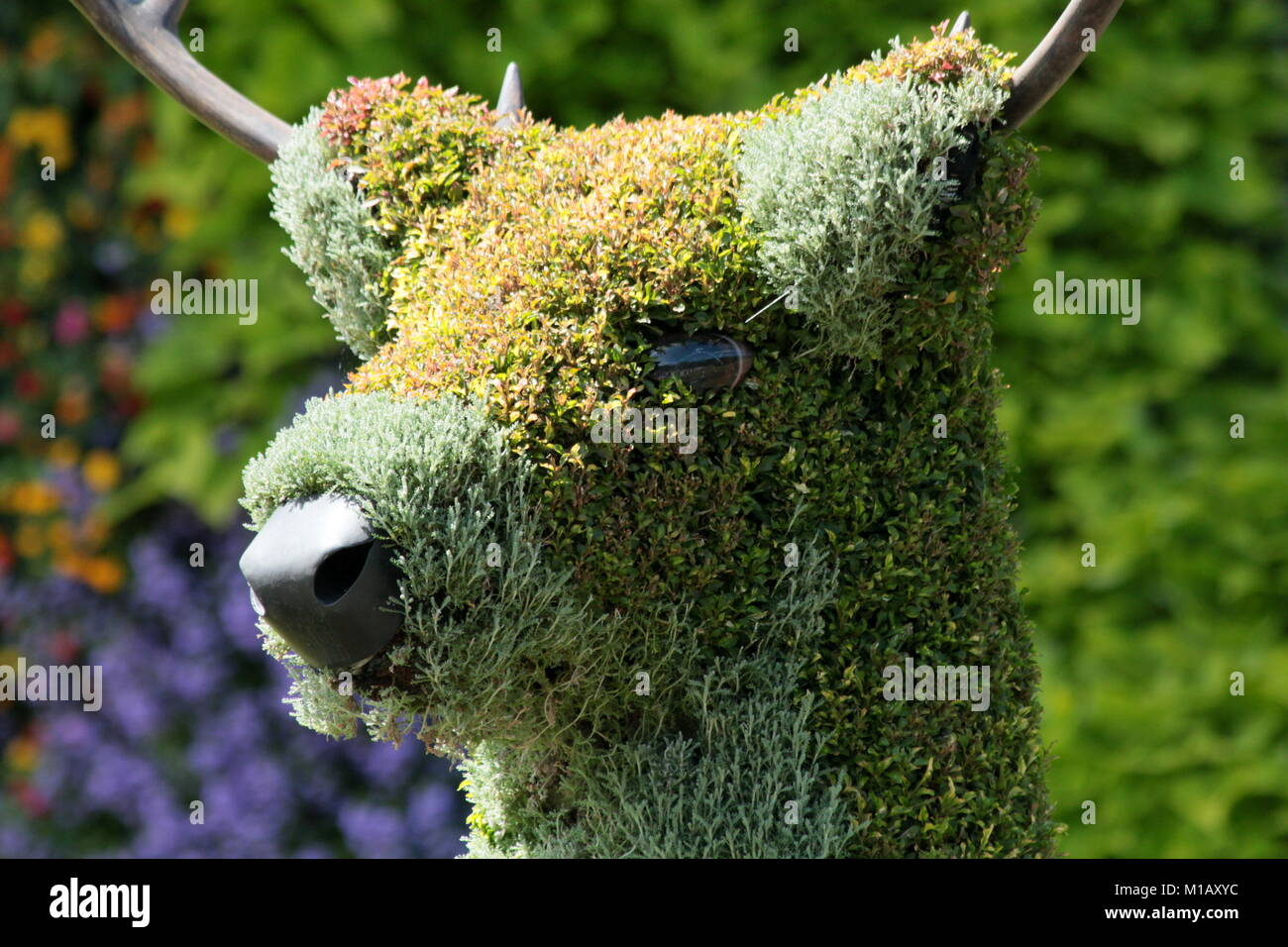 Giant Topiary created for Canada 150 celebrations. - Stock Image
