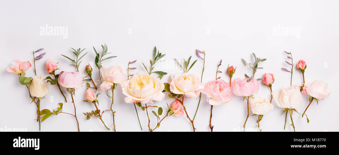Festive flower English rose composition on the white background. Overhead top view, flat lay. Copy space. Birthday, Stock Photo