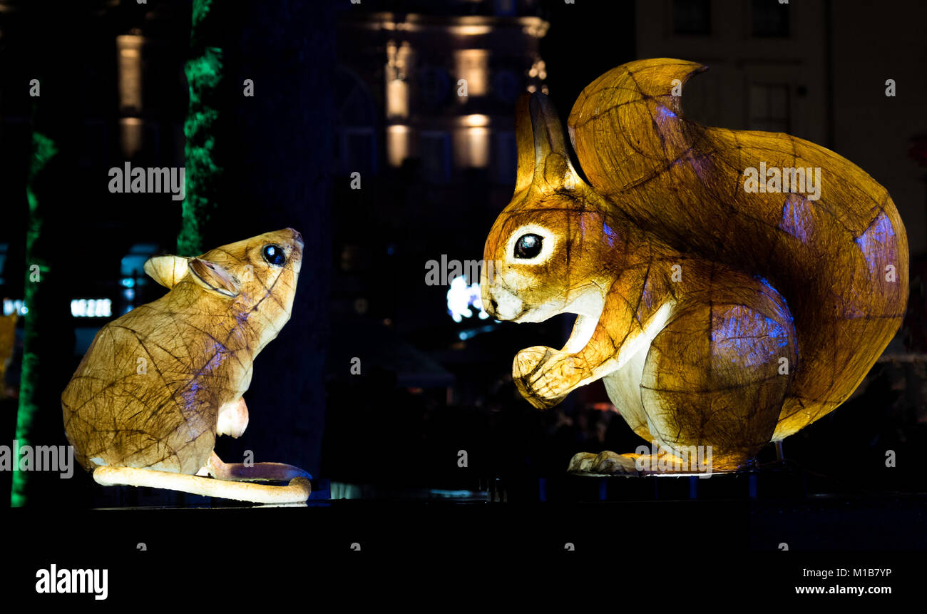 Animals, in Nightlife by UK artist Jo Pocock and the Lantern Company at Lumiere London Light Festival in Leicester - Stock Image