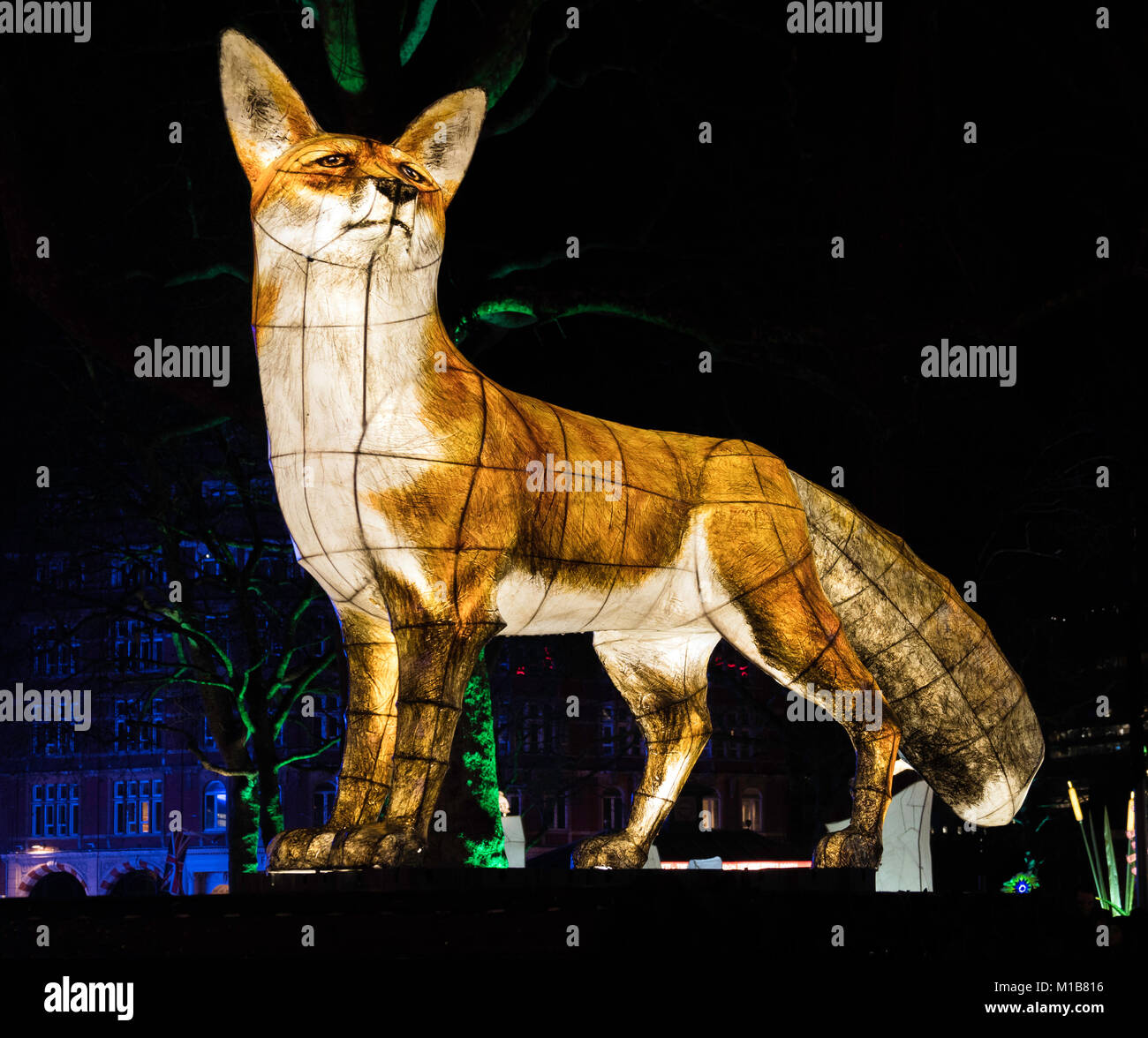 Fox, part of Nightlife by UK artist Jo Pocock and the Lantern Company at Lumiere London Light Festival in Leicester - Stock Image