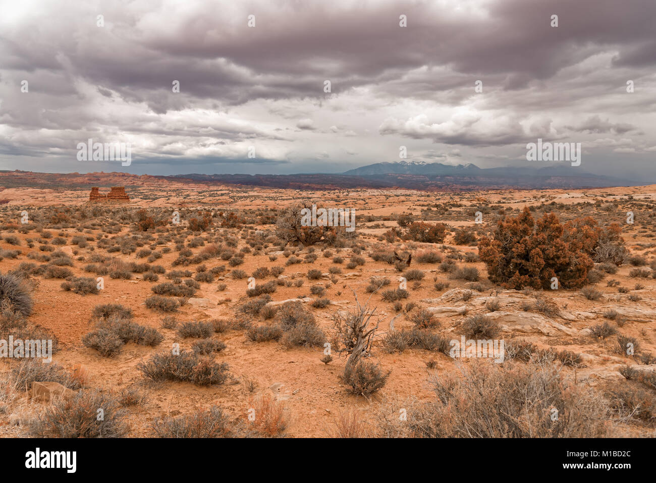 Landscape a look on the rocks of the Arches National Park. It's home to over 2,000 natural sandstone arches. - Stock Image