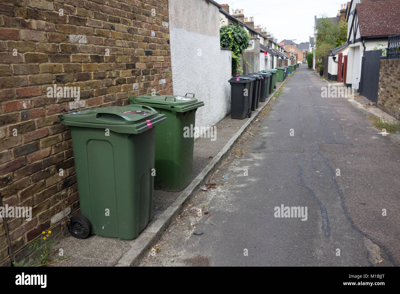 Domestic recycling bins and general household rubbish bins left out along street of residential area, UK - Stock Image
