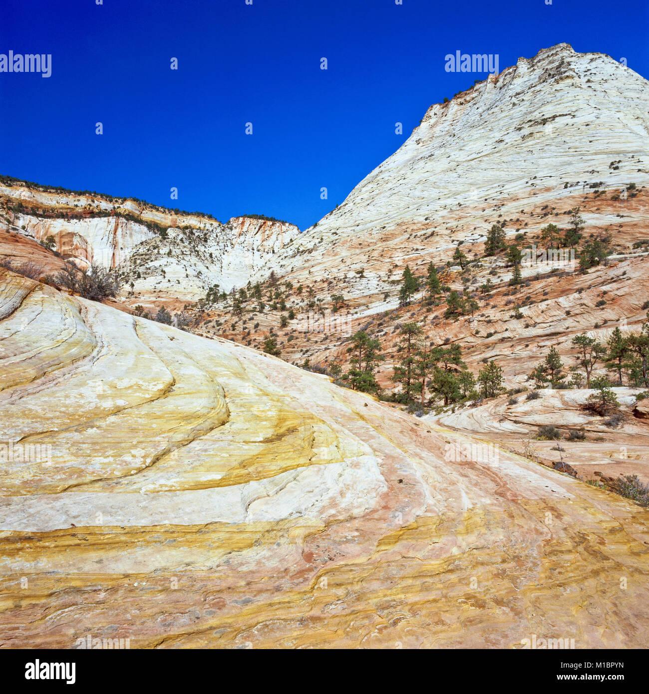sandstone slickrock in the clear creek basin of zion national park, utah - Stock Image