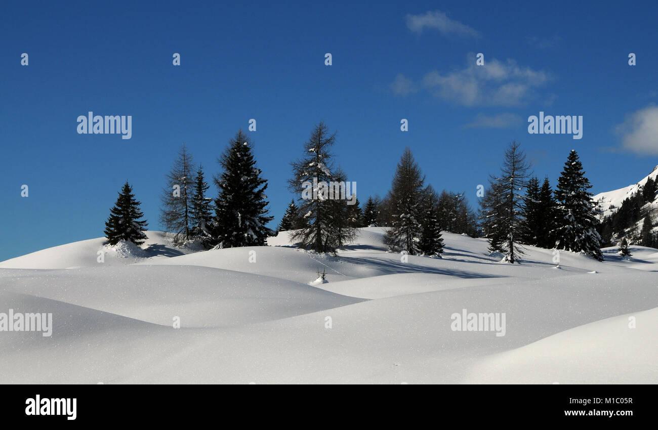 Winter Landscape at San Pellegrino pass in the Italian Dolomites, Val di Fiemme, Trento, Italy. Stock Photo