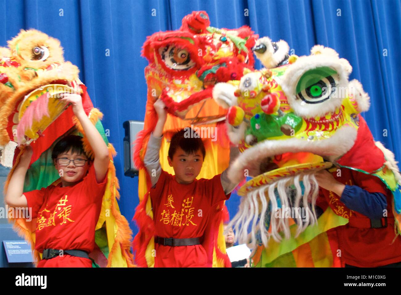 Philadelphia, PA, USA - January 27, 2018: A traditional Chinese lion dance is performed as part of Chinese New Year - Stock Image