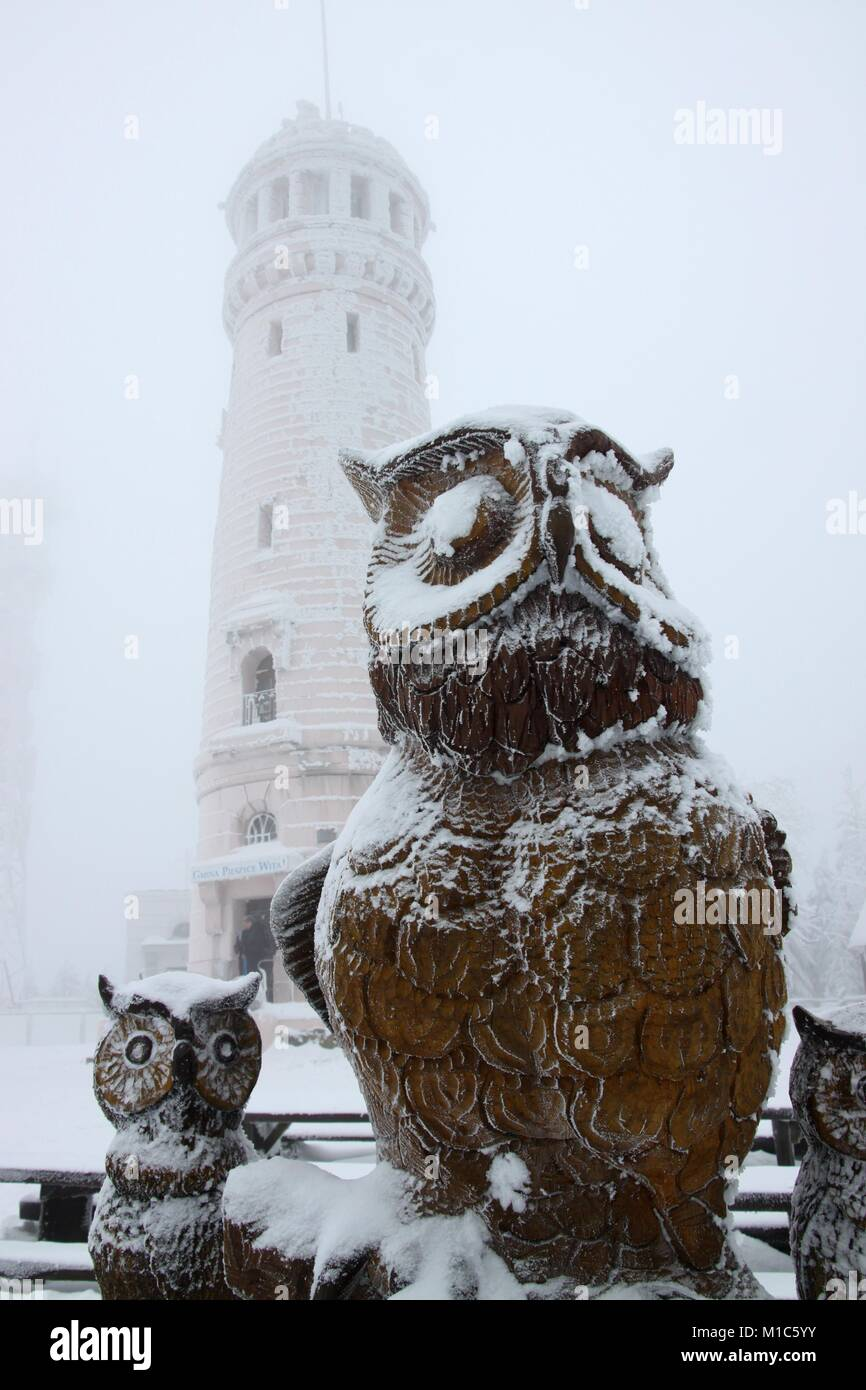 Sculpture of owls and the tower on the summit of Wielka Sowa (Great Owl) in Góry Sowie (Owl Mountains), Sudetes, Stock Photo