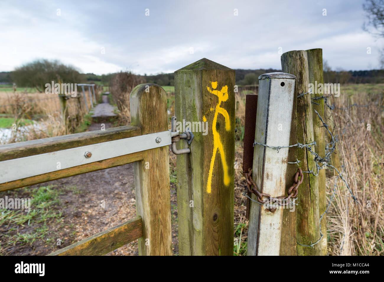 Fordingbridge, Hampshire, 29th January 2018, Avon Valley footpath through Burgate to the New Forest, Fordingbridge, - Stock Image