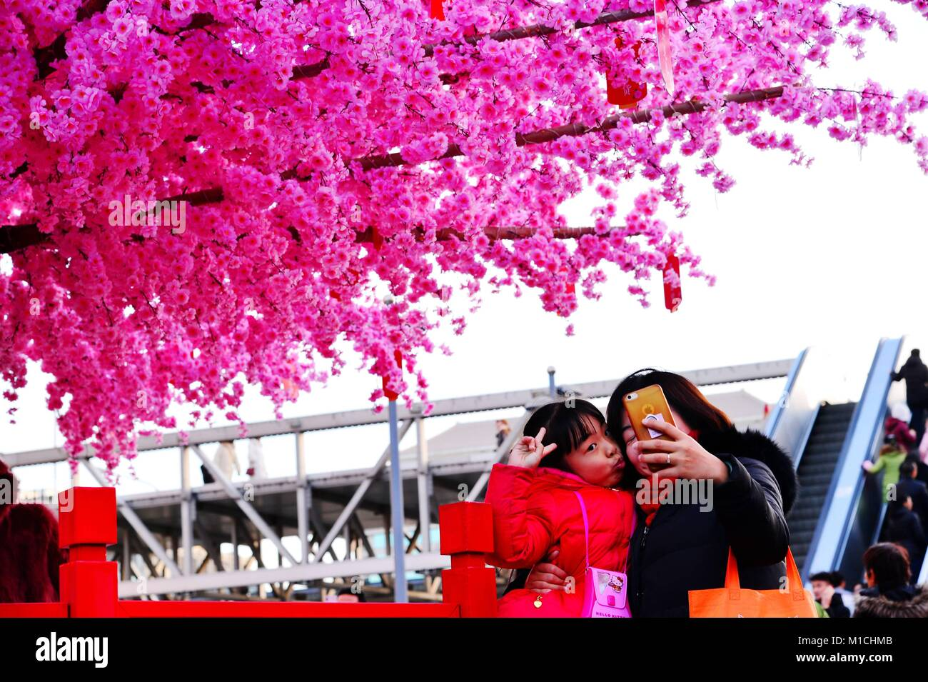 Beijin, Beijin, China. 26th Jan, 2018. Beijing, CHINA-26th January 2018: Artificial peach blossoms can be seen during Stock Photo