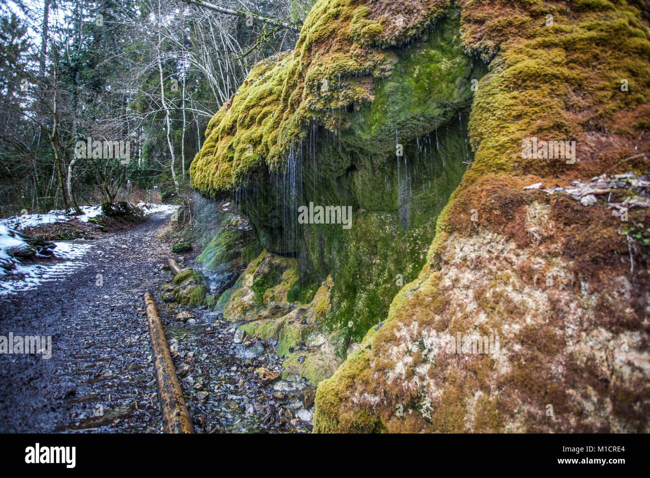 Wassertropfenvorhang at Wutachschlucht in black forest Germany - Stock Image