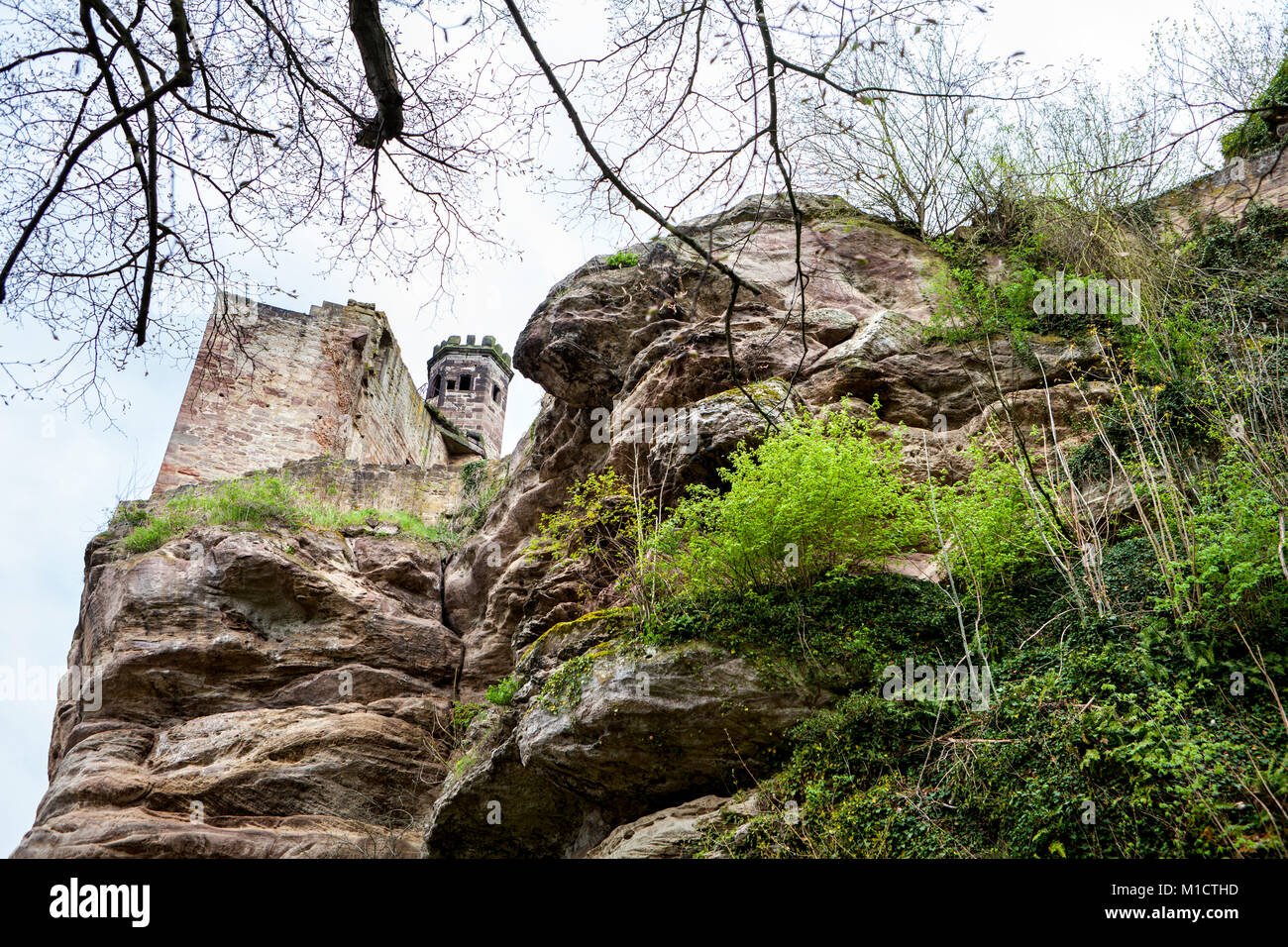 Hardenberg Castle, ruin near Nörten-Hardenberg, district of Northeim, Lower Saxony, Germany - Stock Image