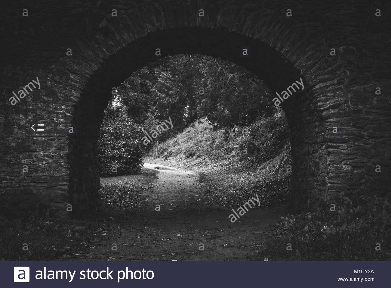 Mystic tunnel to the nature, Czech Republic - Stock Image