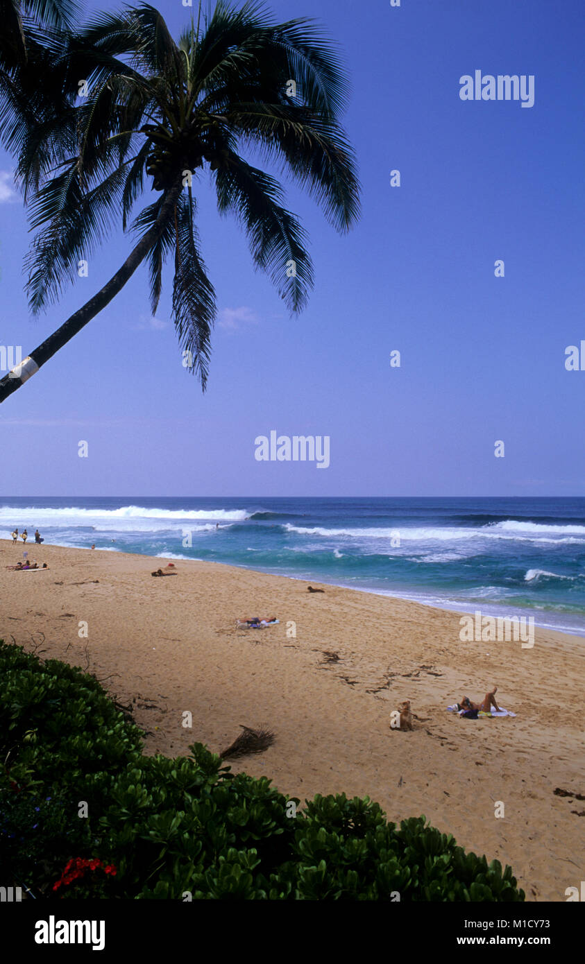 Pipeline, North shore Oahu is one of the best surfing beaches in the world - Stock Image