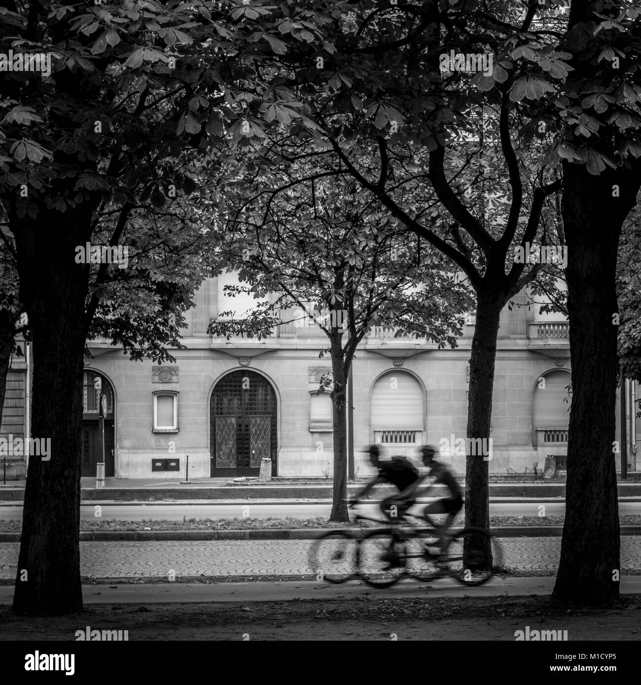 Black and white shot of unrecognizable blurred two person riding bikes on street with trees - Stock Image