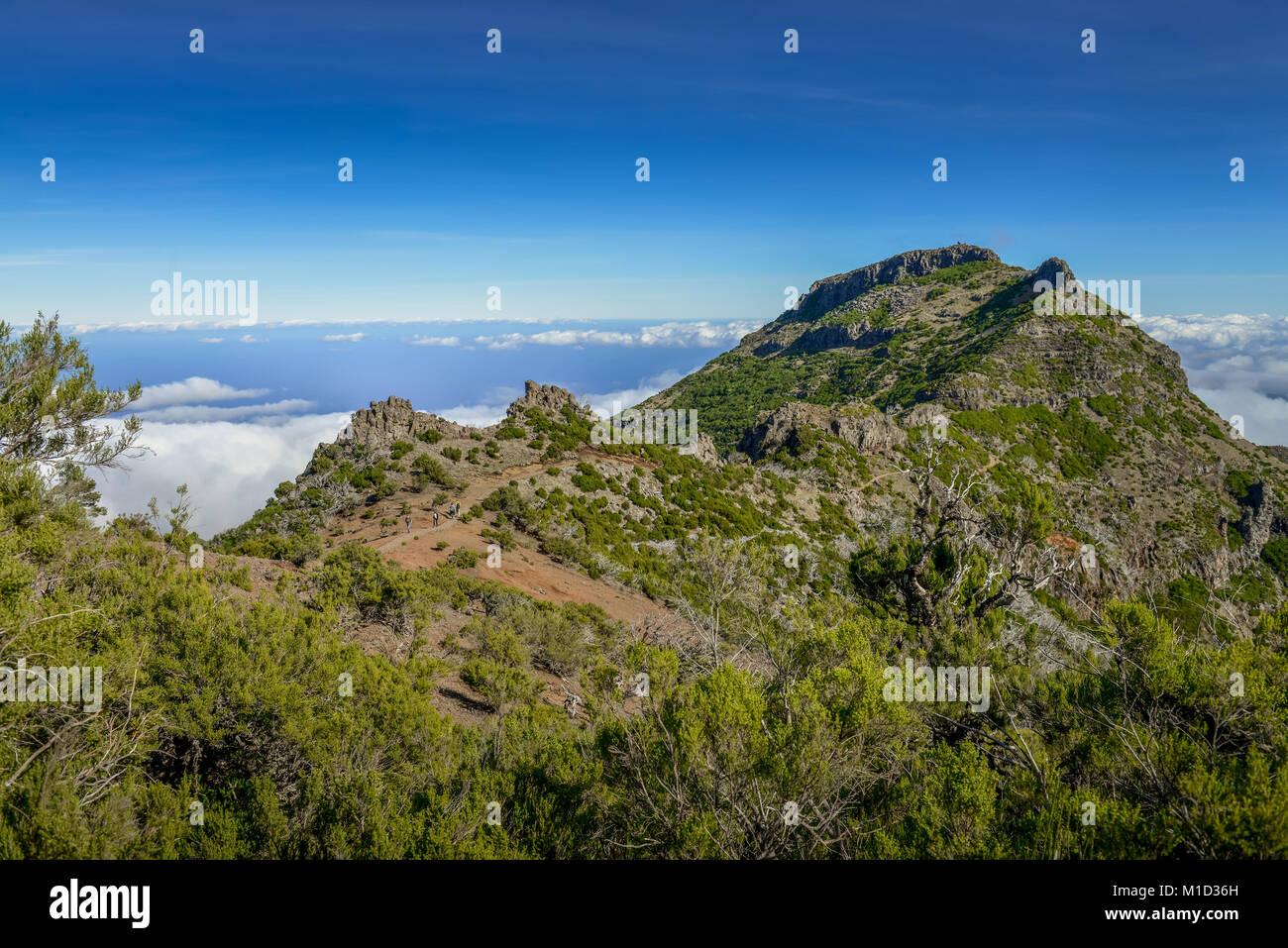 Mountain landscape of the Pico Ruivo, Central Mountains, Madeira, Portugal, Berglandschaft am Pico Ruivo, Zentralgebirge - Stock Image